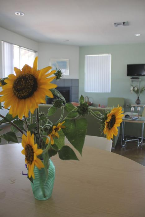 Home Interior Sunflower-Photo